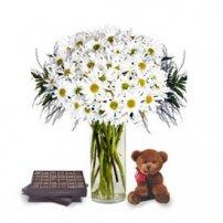 Daisies, Chocolates & Teddy, Israel