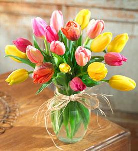 Tulips For You In Jerusalem Israel Jerusalem Flower Shop Israel