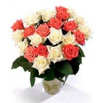 Israel Premium Roses, Israel