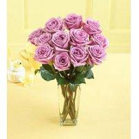 Lavender Roses, Israel