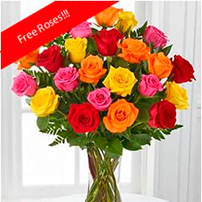 Rainbow Roses OFFER!, Israel