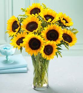 Sunrise Flowers - Flowers to  Israel